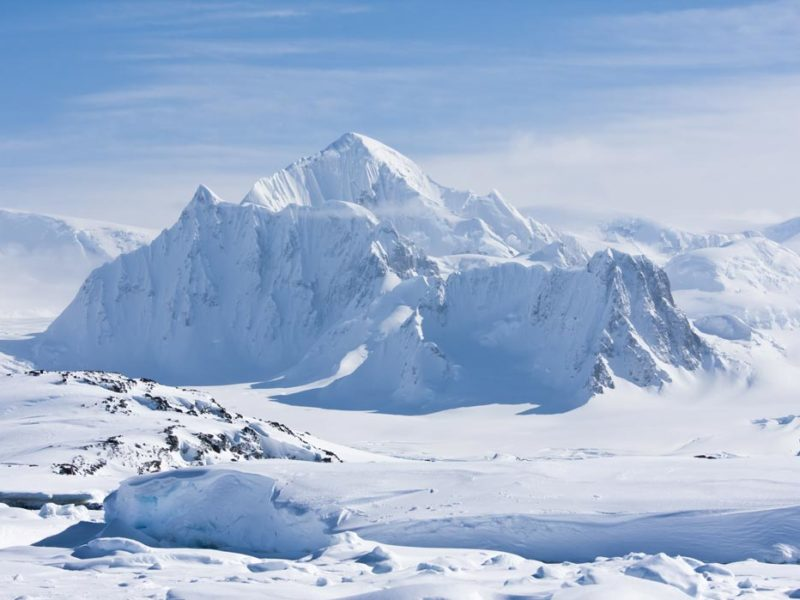insider guide to Antarctica.