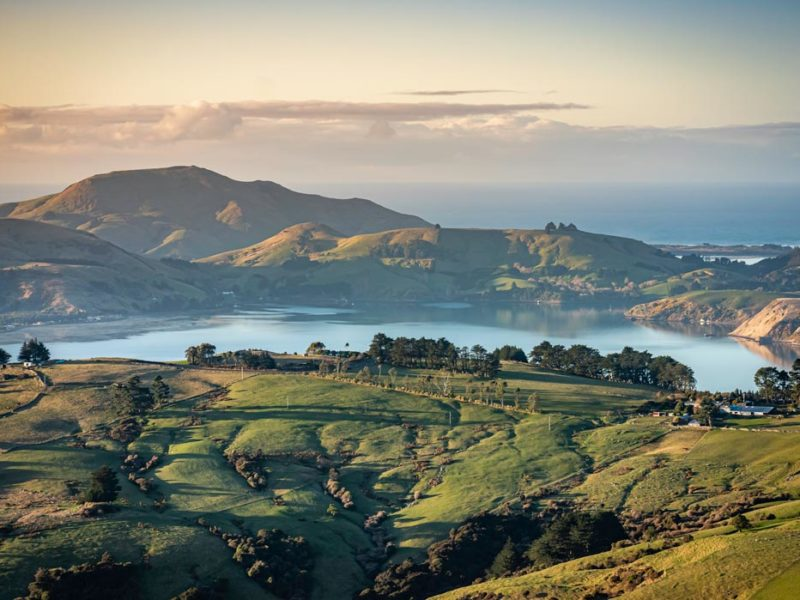 insider guide to New Zealand